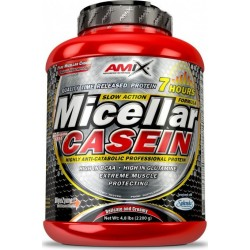 Micellar Casein 1000 g Amix